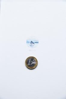 15Ballena azul1-5