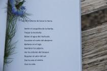 Poema11